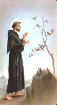 ST. FRANSISKUS DR ASSISSI [1181-1226]